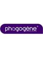 Phagogène
